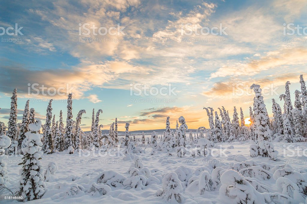 Winter landsscape in direct light stock photo