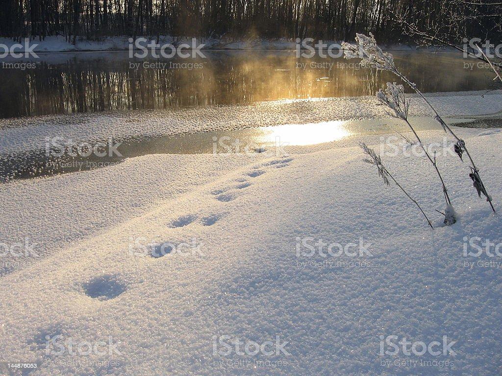 Winter light stock photo