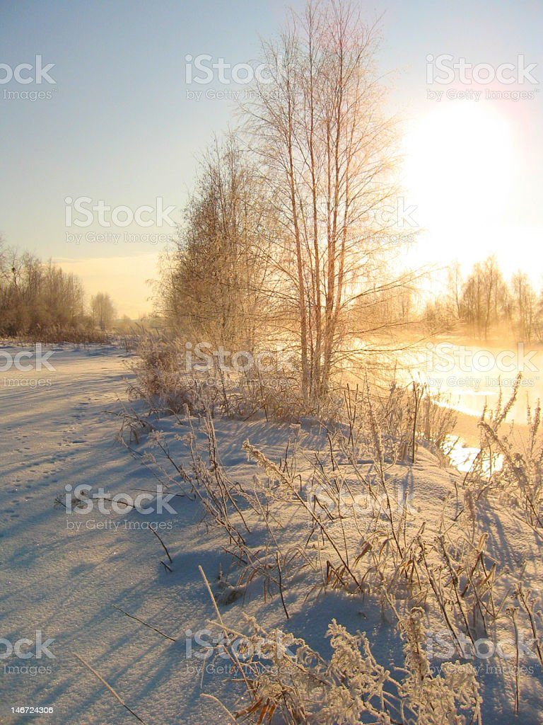 Winter light royalty-free stock photo