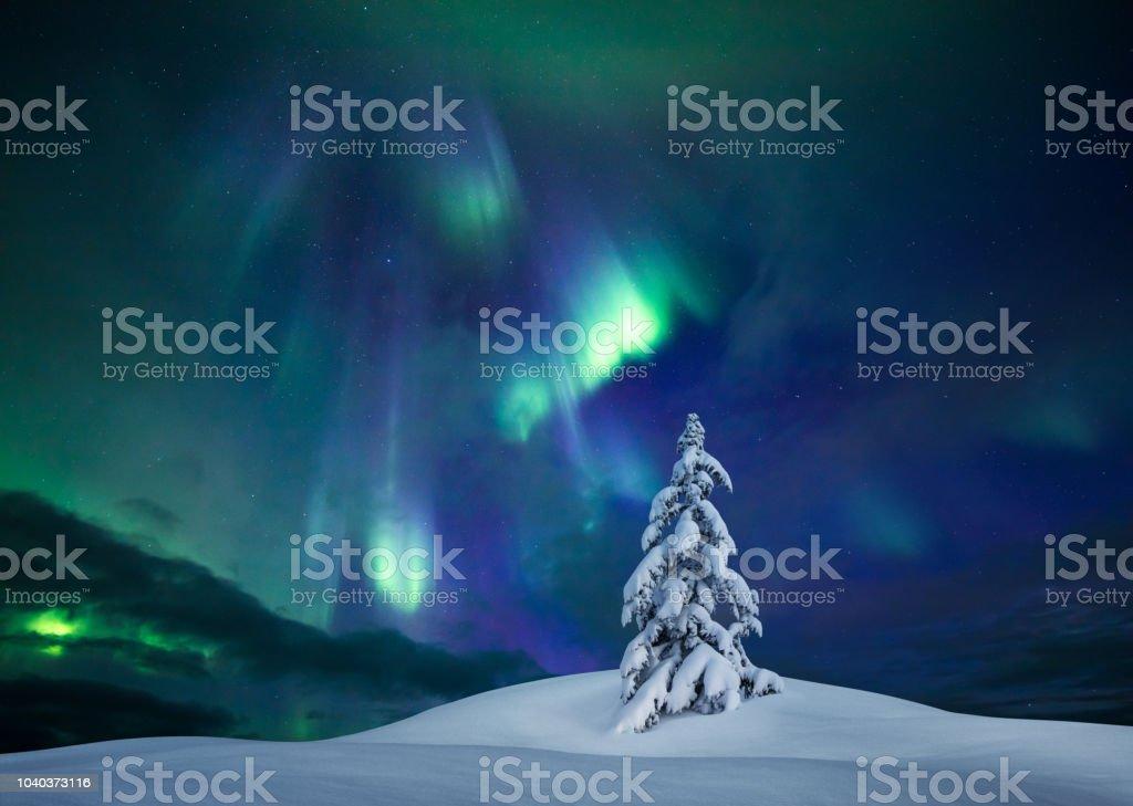 Winter Lights stock photo