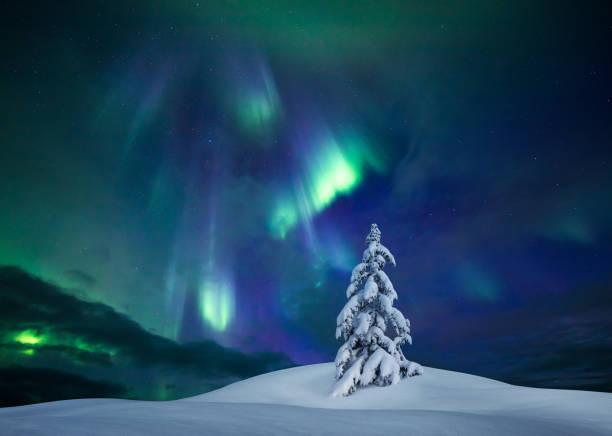 Lumières d'hiver - Photo