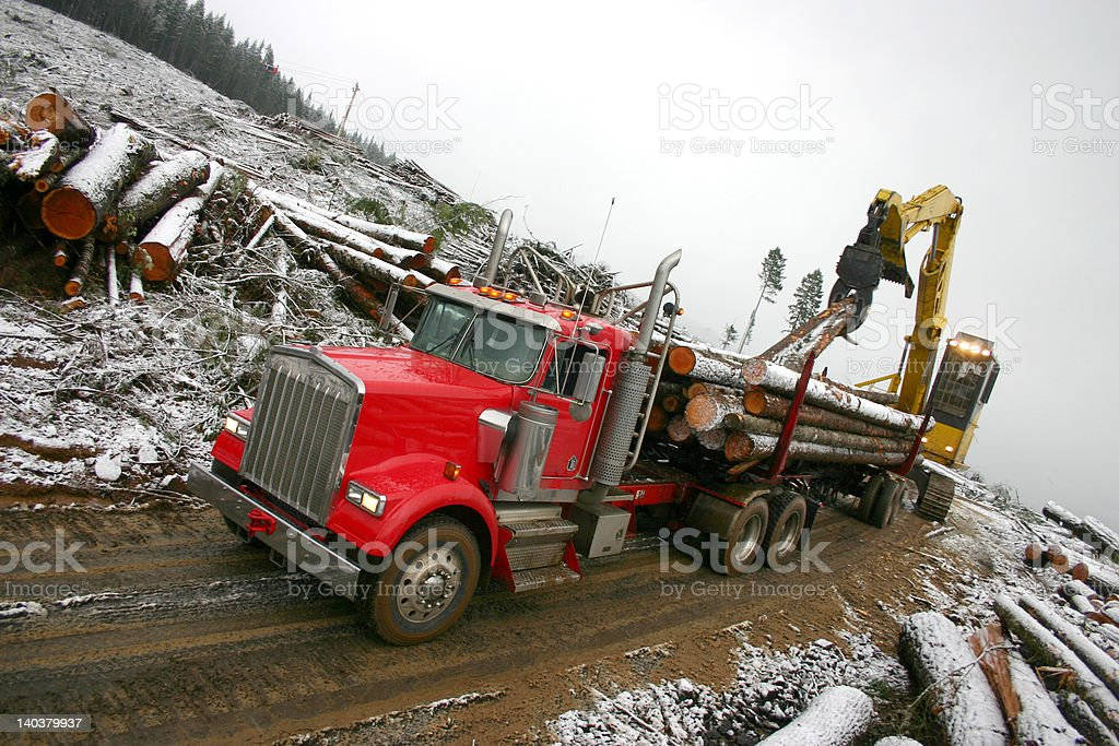 Winter logging royalty-free stock photo