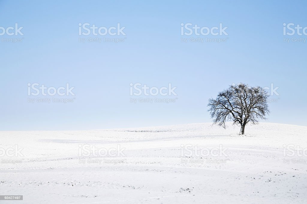 winter loneliness royalty-free stock photo
