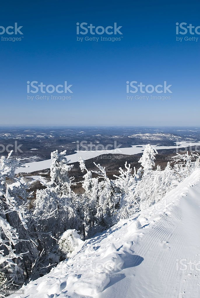 Winter magic - VII royalty-free stock photo