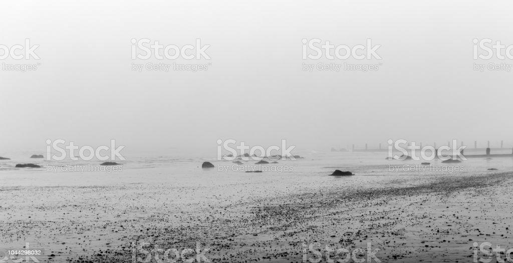 Winter Misty Beach – zdjęcie