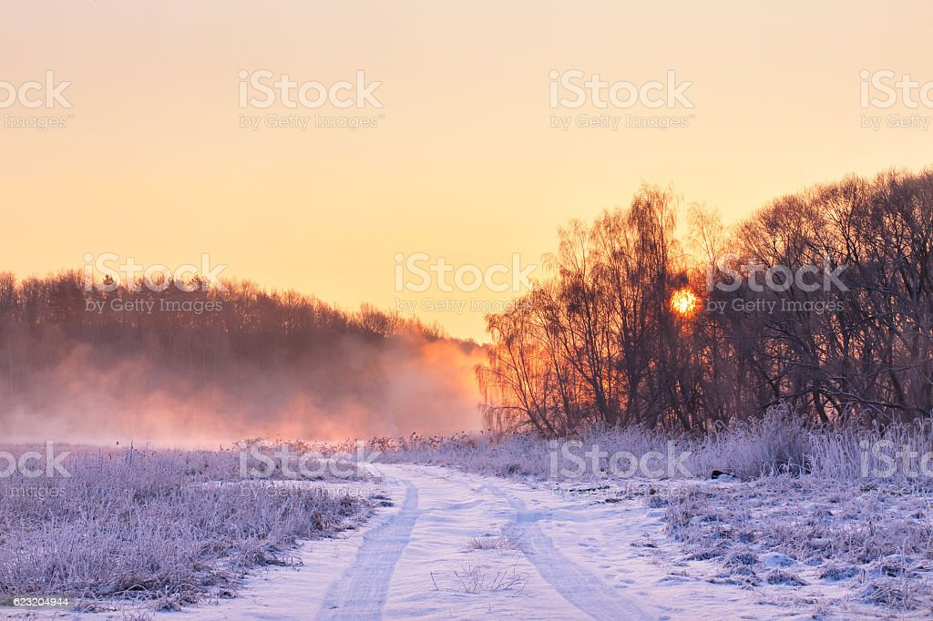 Winter misty colorful sunrise. Rural foggy and frosty scene. stock photo