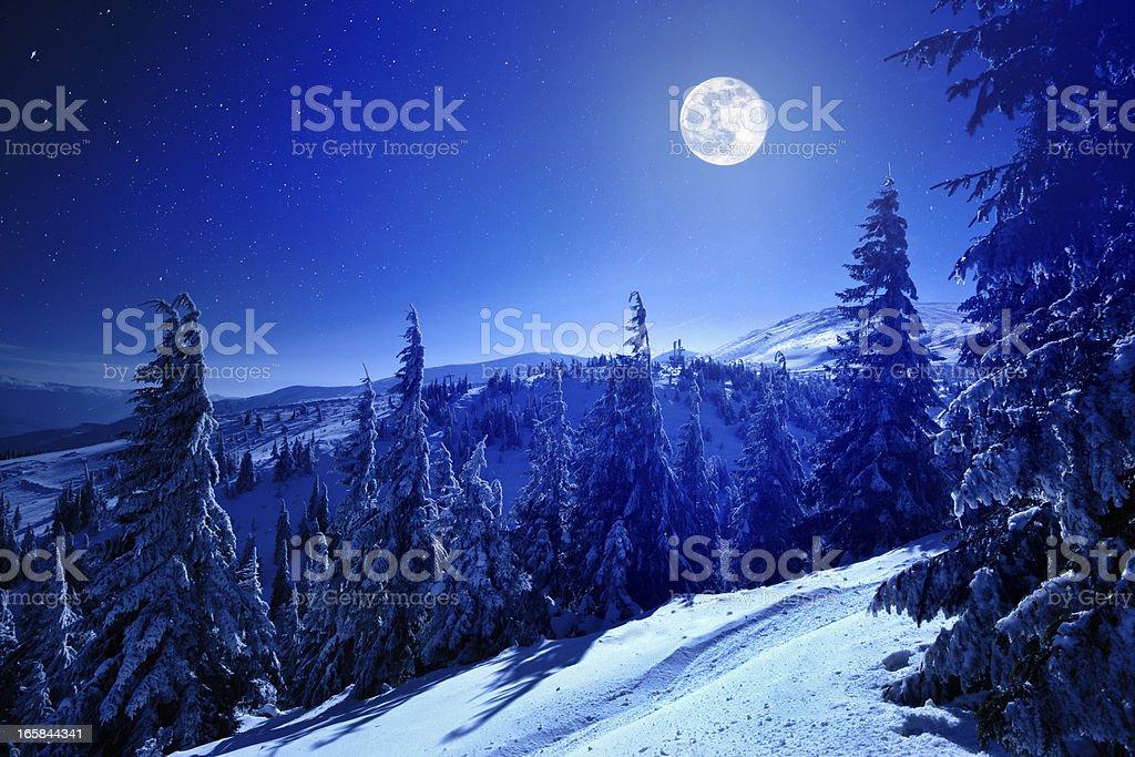 Winter moon – Foto