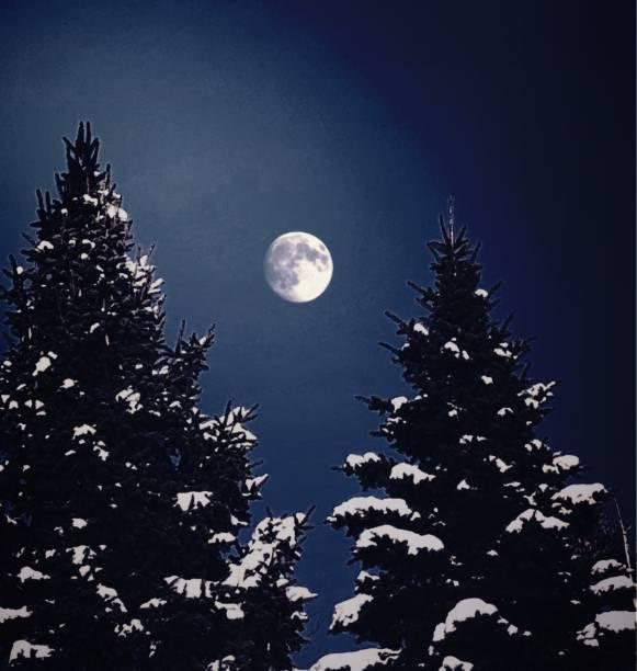 Winter Moon stock photo