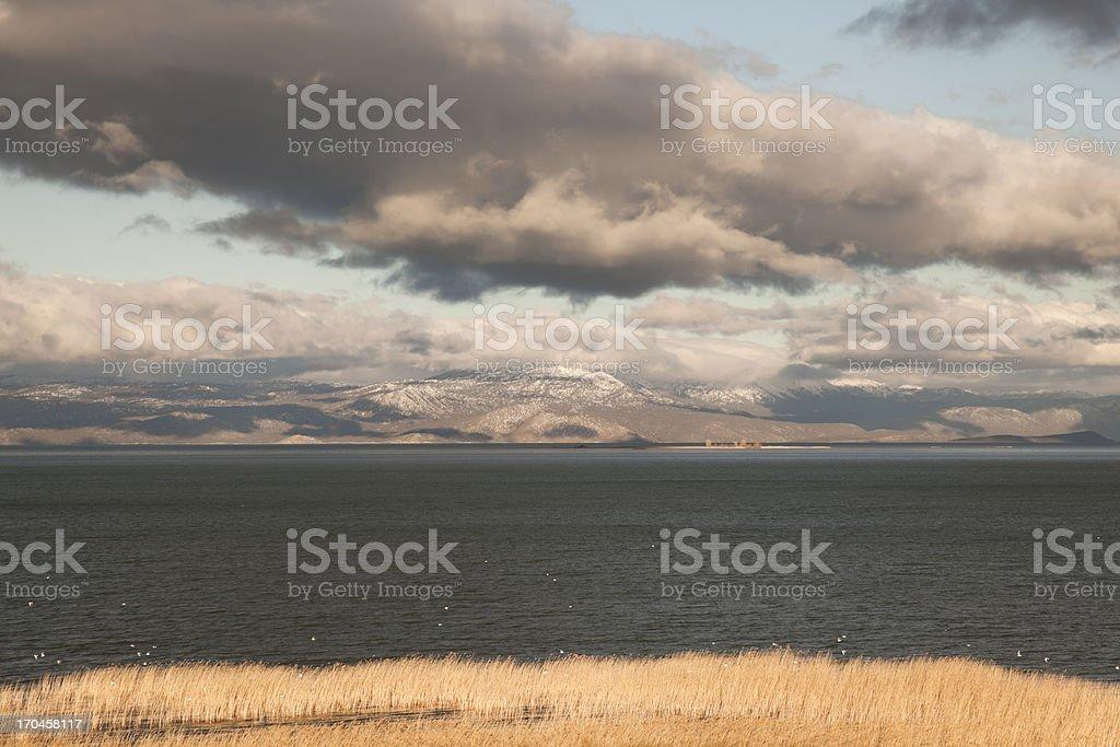 Winter morning at lake royalty-free stock photo