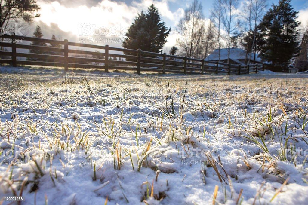 Winter morning landscape blurred background stock photo
