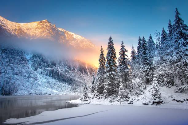tatra 국립 공원 일출 모르스키 이내의 겨울 산 풍경 - 카르파티아 산맥 뉴스 사진 이미지