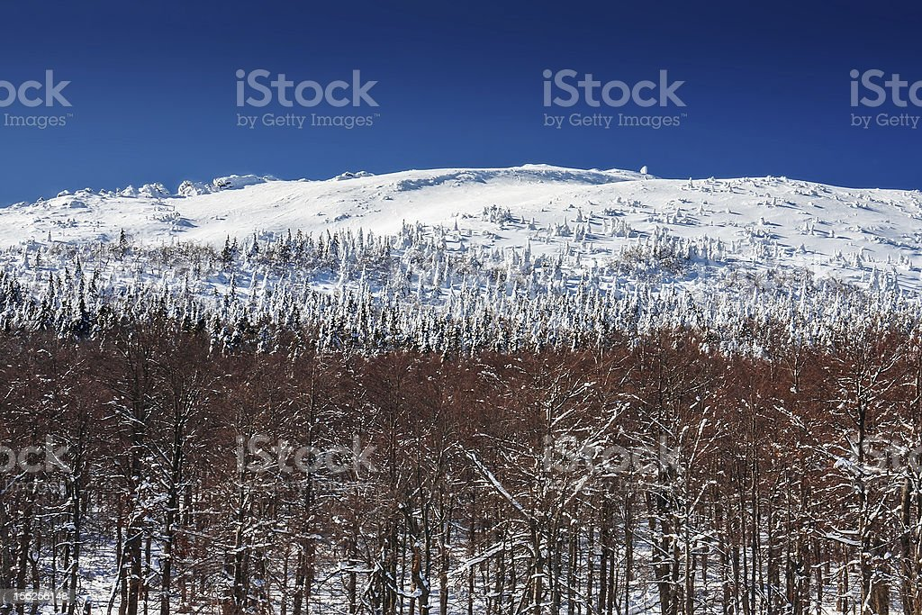 Winter mountain landscape royalty-free stock photo