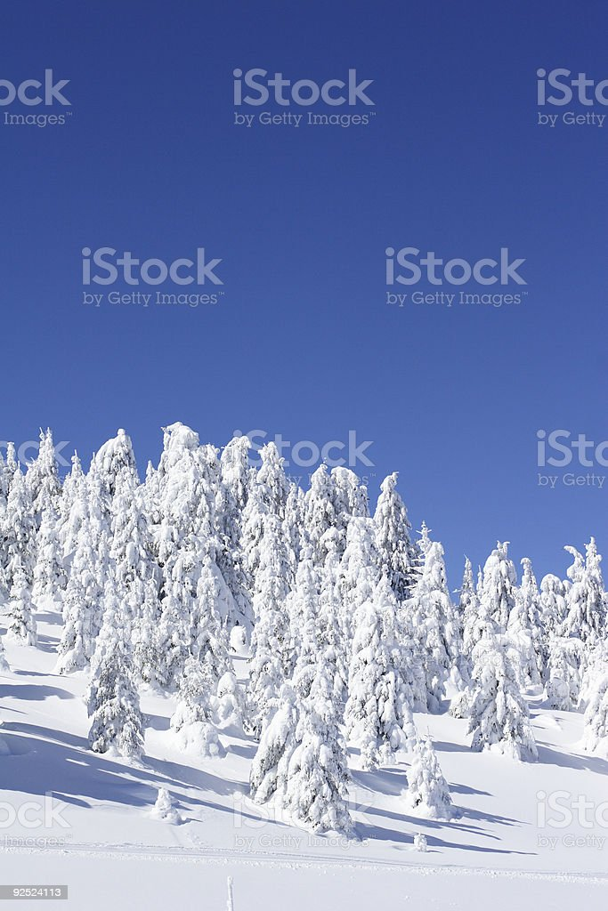 Winter Mountain Scenery royalty-free stock photo