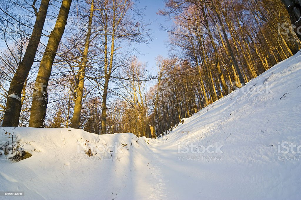 winter mountains landscape royalty-free stock photo