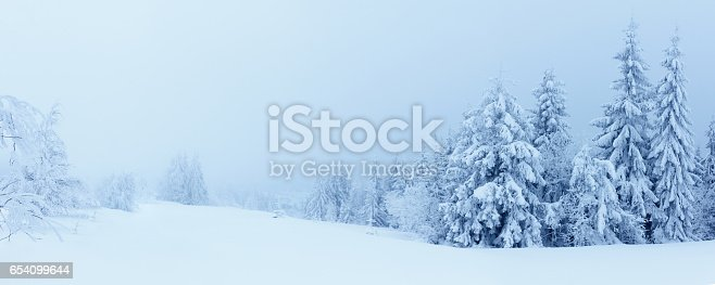 511998996 istock photo Winter mountains landscape with high spruces and snow 654099644