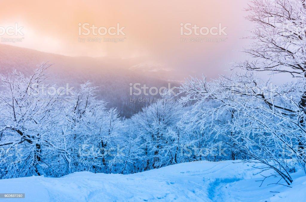 Winterpanorama Berge im Schnee, Sonnenuntergang, Bieszczady, Polen – Foto