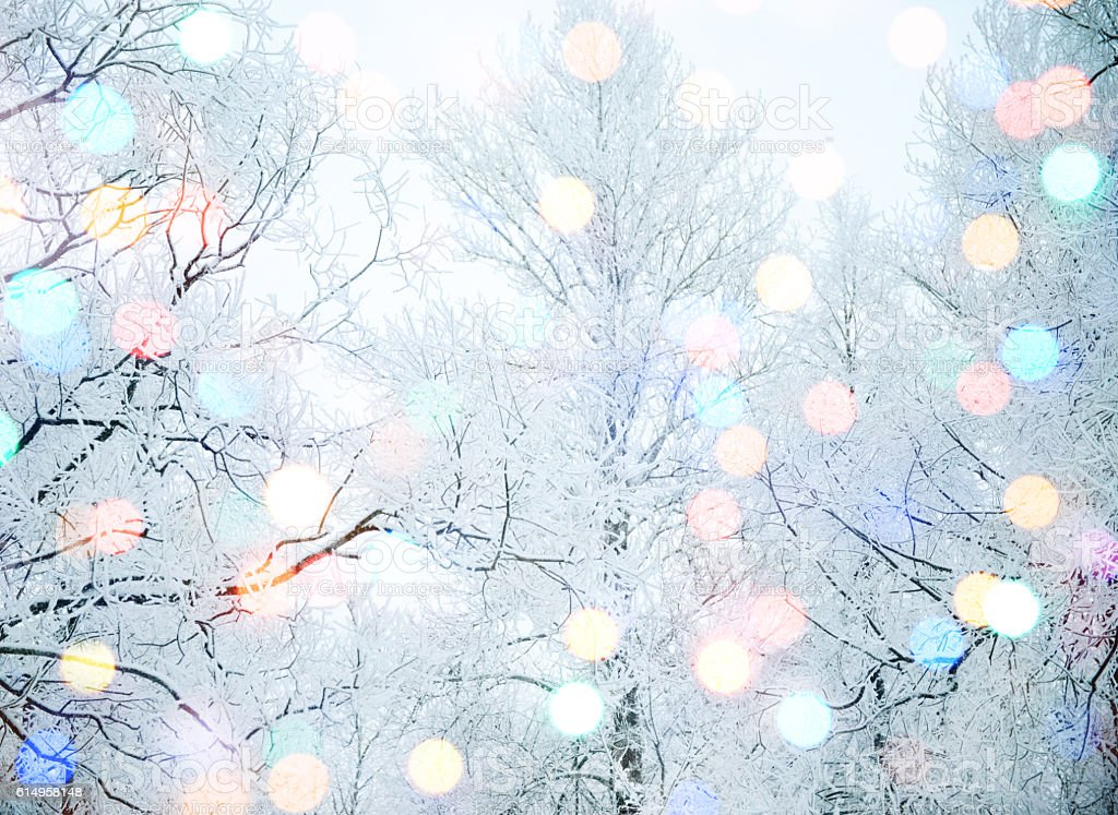winter nature and Christmas light stock photo
