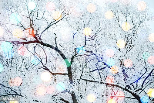 istock Winter nature and Christmas light 864053120