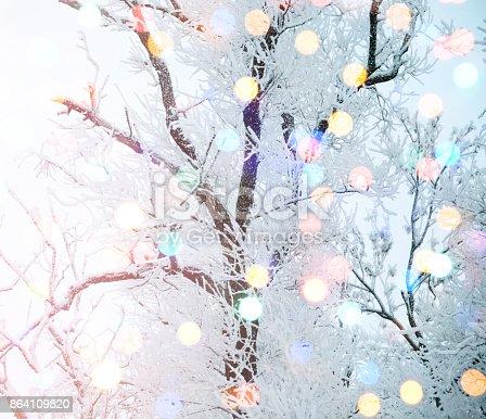 istock Winter nature and Christmas light 864109820