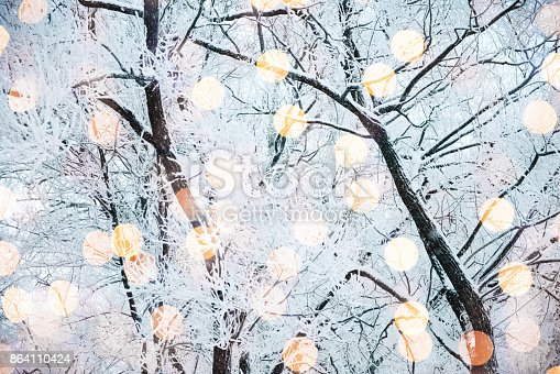 istock Winter nature and Christmas light 864110424
