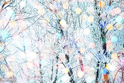 istock Winter nature and Christmas light 864124570