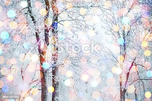 istock Winter nature and Christmas light 864154350