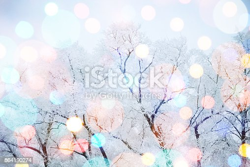 614958148 istock photo Winter nature and Christmas light 864190274