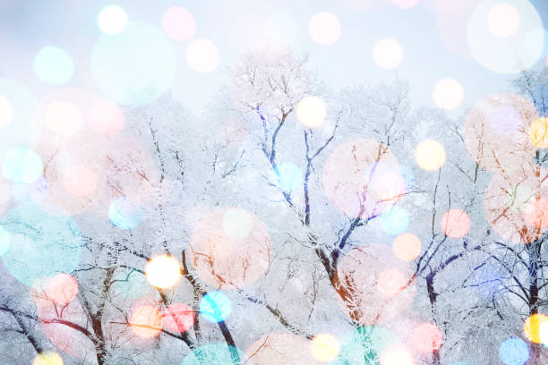 Winter nature and christmas light picture id864190274?b=1&k=6&m=864190274&s=612x612&w=0&h=6weaesu1fnwymg0lom1t33mvu7odepla2krkb9v 2rw=