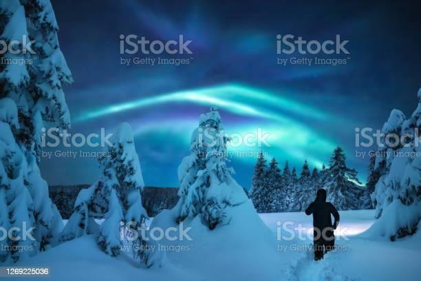Photo of Winter Night Adventure