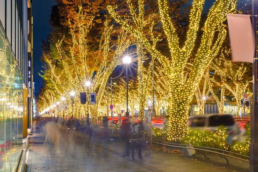 東京表参道の冬の夜のイルミネーション - お祝いのストックフォトや画像を多数ご用意