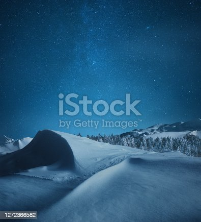 Idyllic snowy winter landscape under the starry night sky.