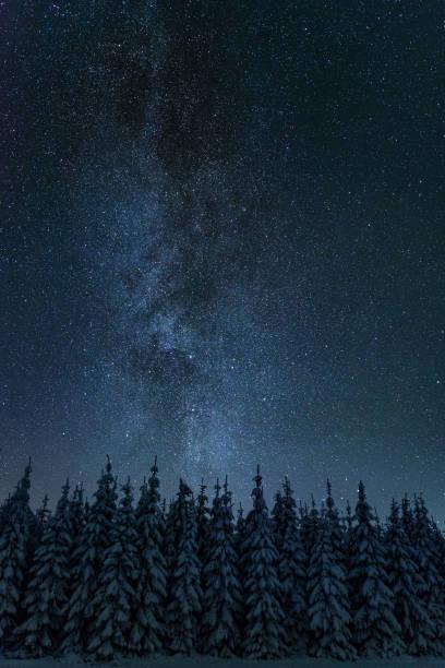 Winter night landscape stock photo