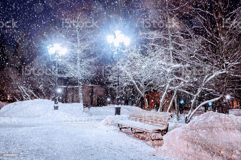 Winter night landscape - snowy bench under frosty trees stock photo