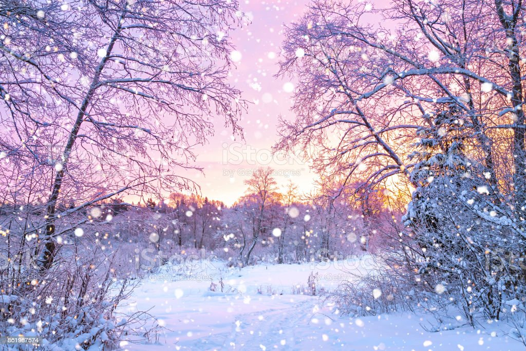 winter night landscape with sunset in forest stock photo