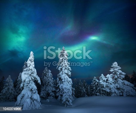 istock Winter Night 1040374966