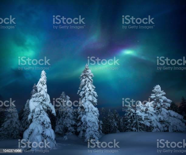 Photo of Winter Night