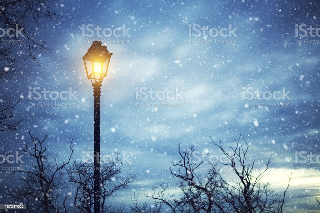 Winter Night royalty-free stock photo
