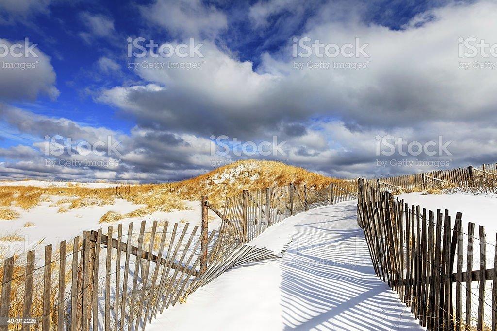 Winter on Cape Cod stock photo
