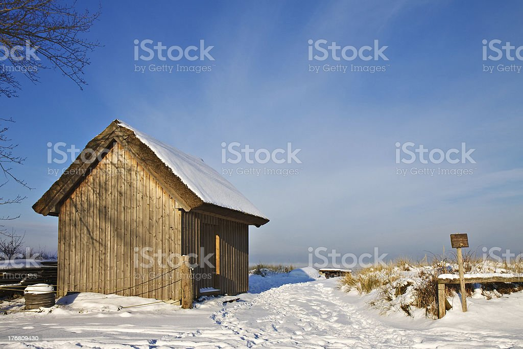 Winter on shore stock photo