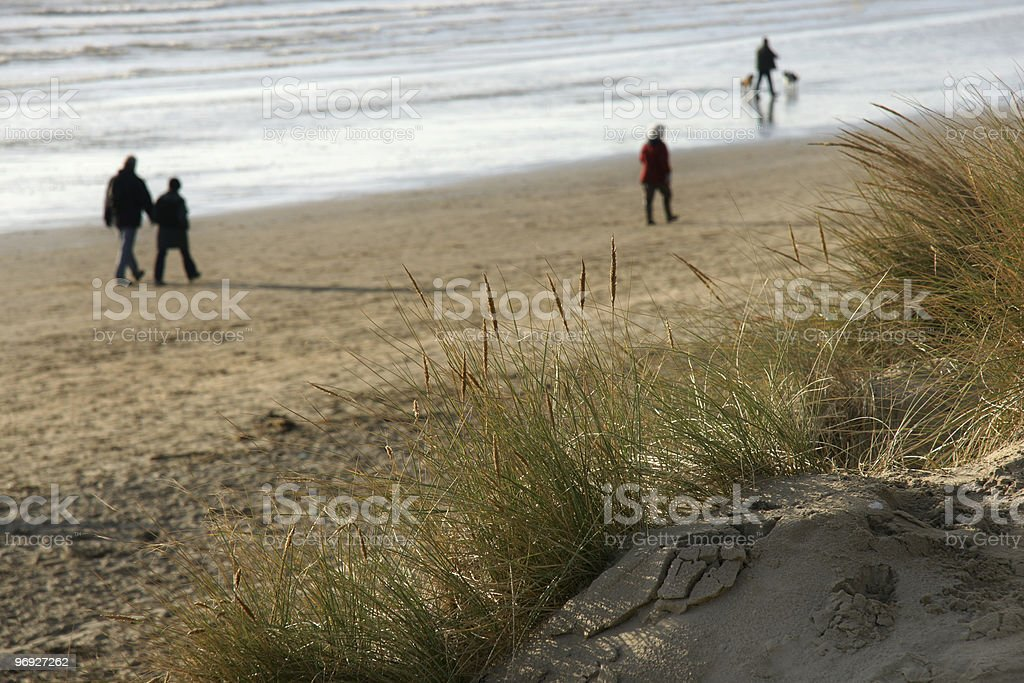 Winter on the beach royalty-free stock photo