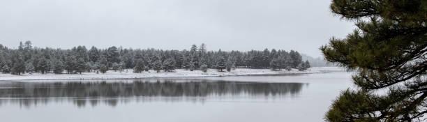Winter on the lake stock photo