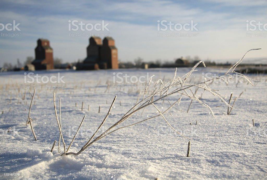 Winter on the Prairie royalty-free stock photo