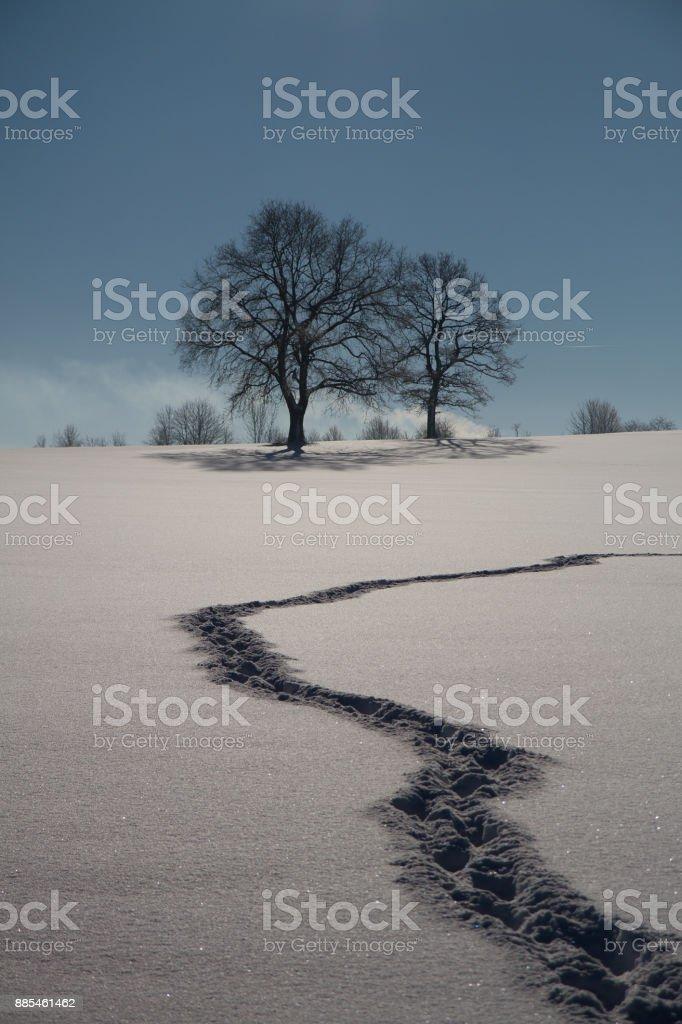 Winter on the Swabian Alb stock photo