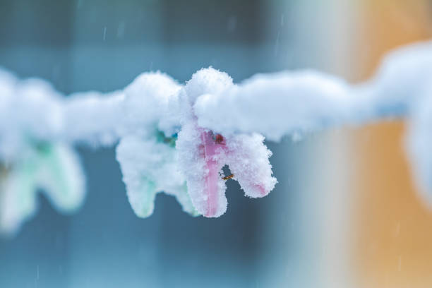 Winter outdoors on a rope hanging clothespins torn by snow stock photo
