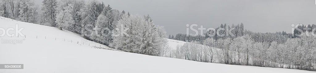 Winter Panorama (XL Lizenzfreies stock-foto