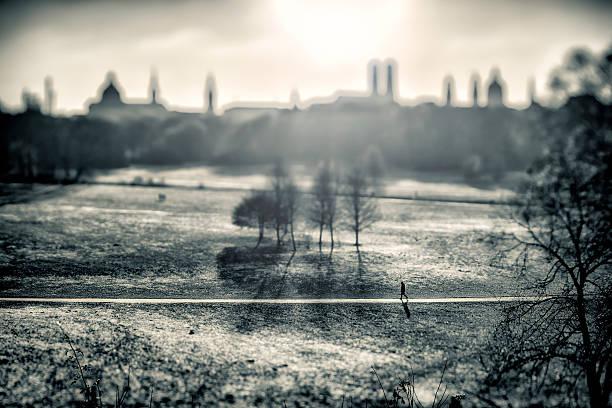 winter park in münchen, deutschland.  schwarz und weiß - münchen weather stock-fotos und bilder