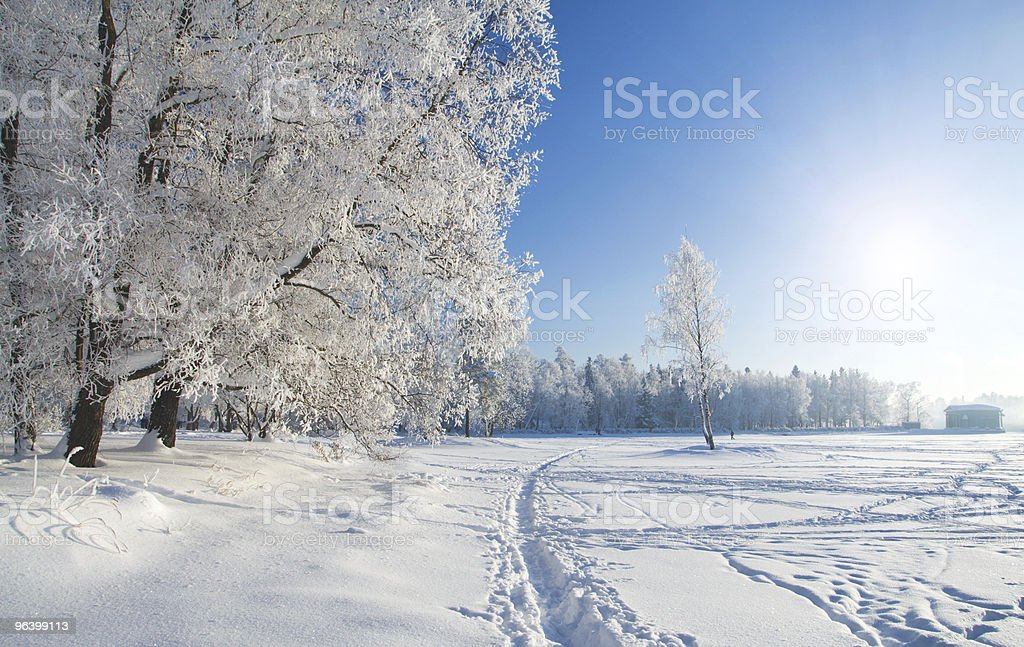 Winter park in snow - Royalty-free Agricultural Field Stock Photo
