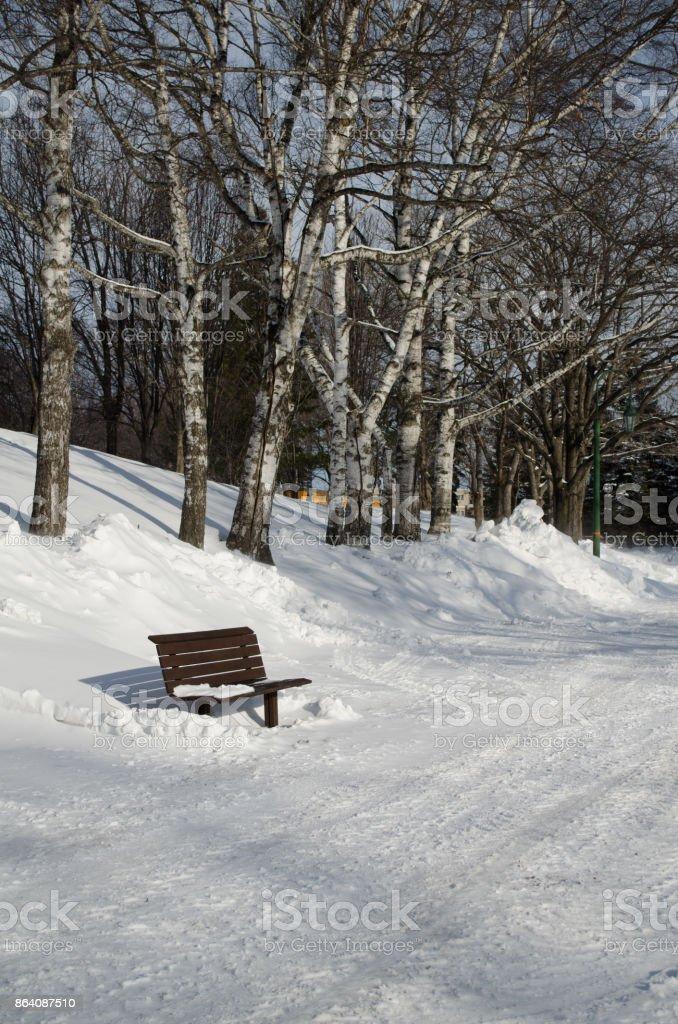 Winter Park royalty-free stock photo