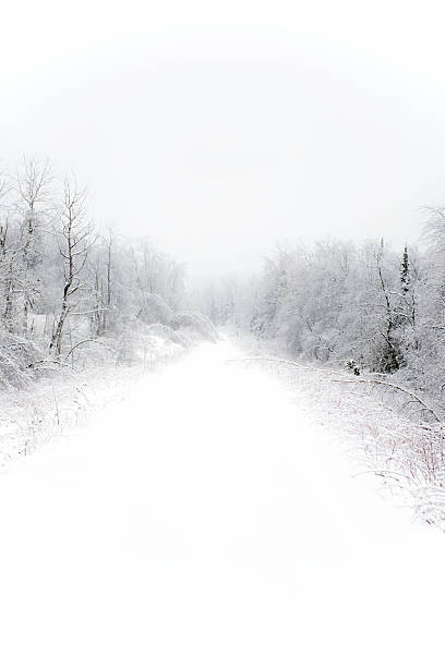 Winter path cover in snow stock photo