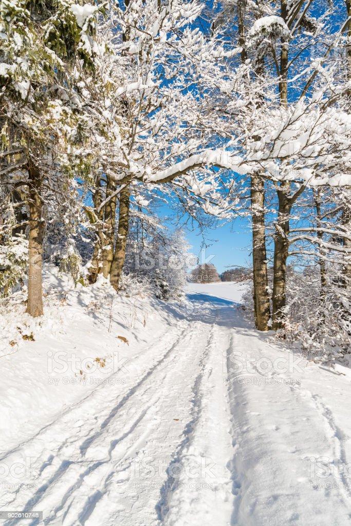 Winter path in Beskid Sadecki Mountains with sun on blue sky, Poland stock photo